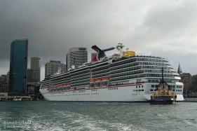 Circular Quay Cruise Ship