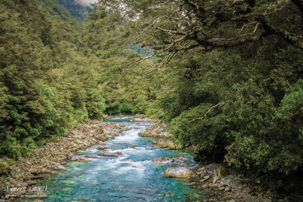 Aqua Colored Hollyford River