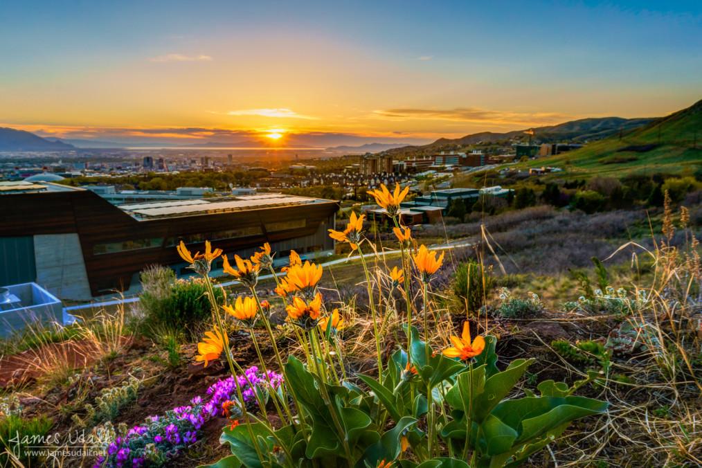 Spring Sunset in Salt Lake City