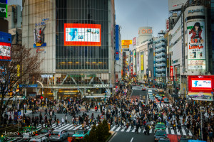 Shibuya Crossing (Scramble)