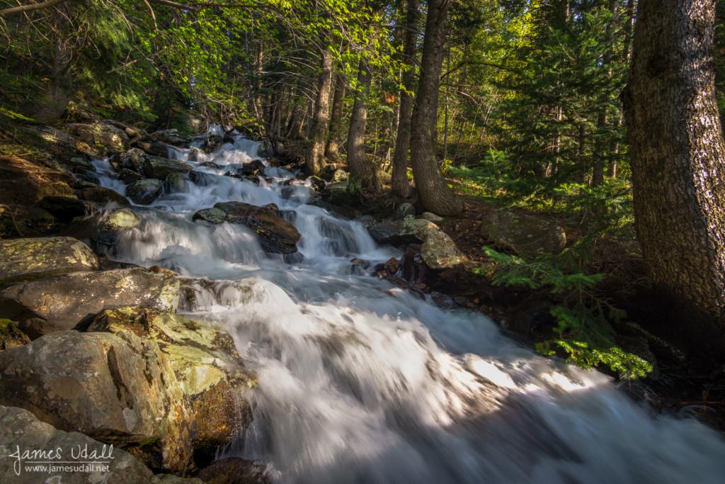 Broads Fork Creek - Big Cottonwood Canyon