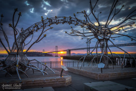 """Soma"" Sculpture at Pier 14 at Sunrise"