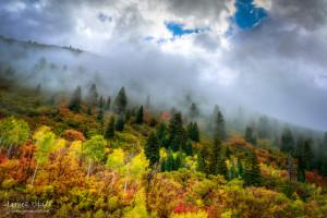 Foggy Mountainside in Autumn