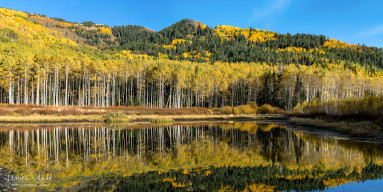 Willow Lake in the Fall