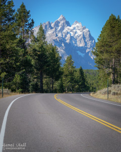 Road Through Grand Tetons