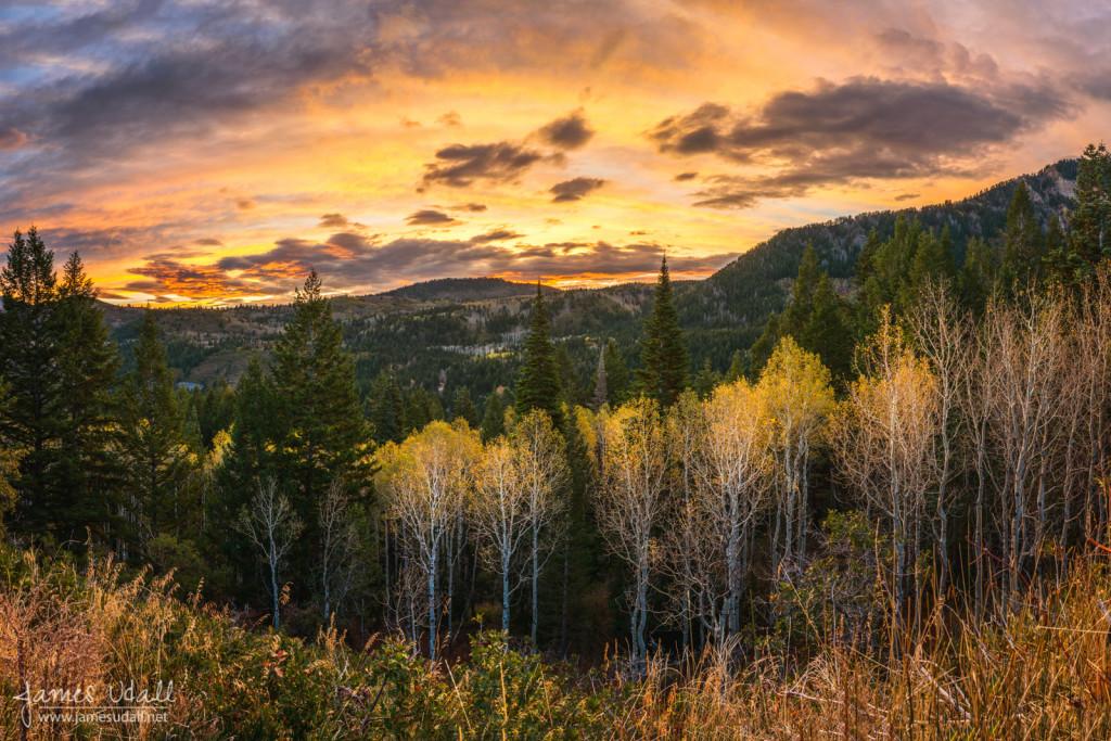 Sunrise from below Mount Timpanogos in Utah.