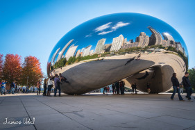 Cloud Gate/The Bean