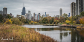 Lincoln Park in the Fall