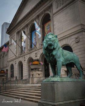 Lion Statue at The Art Institute of Chicago