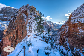 The Final ascent to Angels Landing