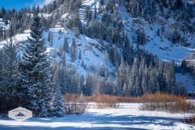 Winter at Silver Lake