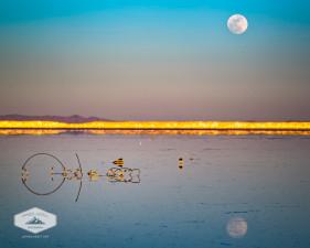 A Full moon rises above the Bonneville Salt Flats.