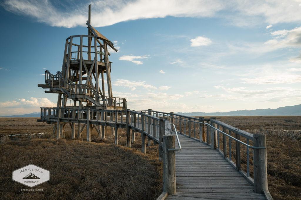Tower over the Great Salt Lake Shoreline Preserve.