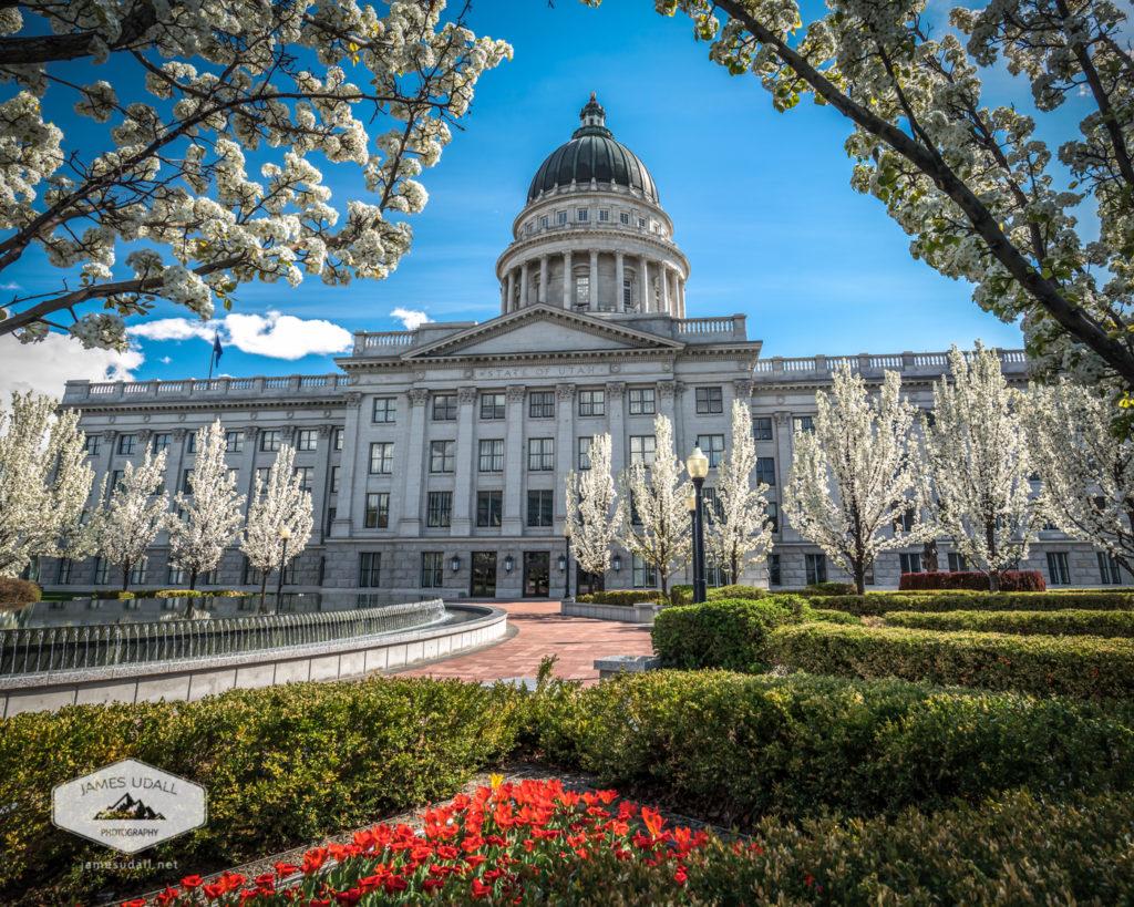 Springtime at the Utah State Capitol