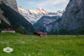Farm in the Lauterbrunnen Valley