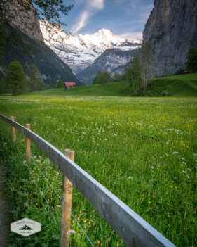 Path Through Lauterbrunnen Valley