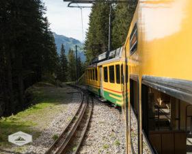Wengernalpbahn Train to Wengen