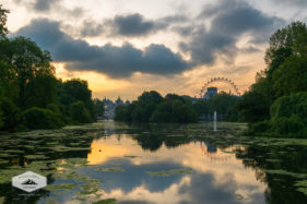 St. James Park Sunrise