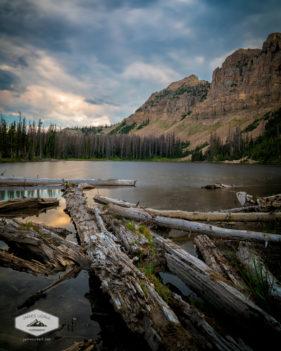 Logs in Notch Lake