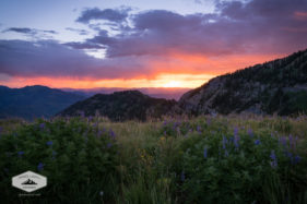 Sunrise from Timpanogos Basin