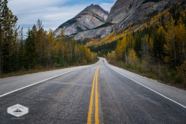 Fall Along the Icefields Parkway