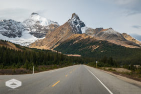 Mountains along the Icefields Parkway