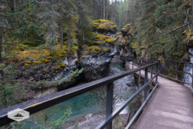 Elevated Path in Johnston Canyon