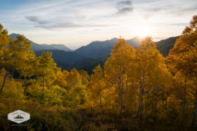 Fall Afternoon in the Wasatch