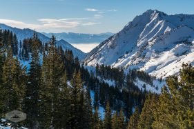 View of Little Cottonwood Canyon in Winter